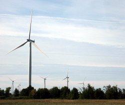 Wind turbines on Wolfe Island. Photo: Mike Buckthought.